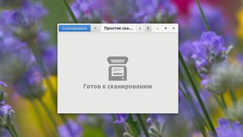 Как сканировать в PDF?
